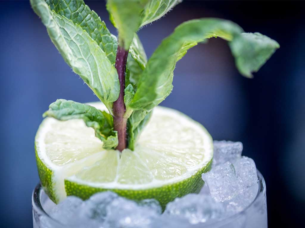 Betsy Mojito with lime and mint